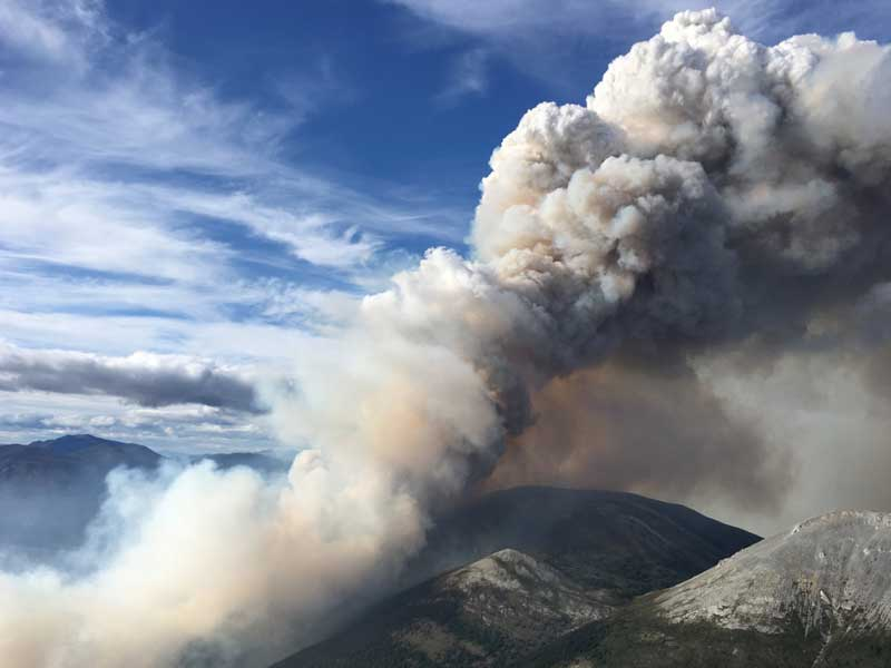 Wildfire Management